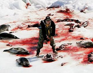 seal-hunt